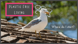 Plastic Free Living - Where do I start?